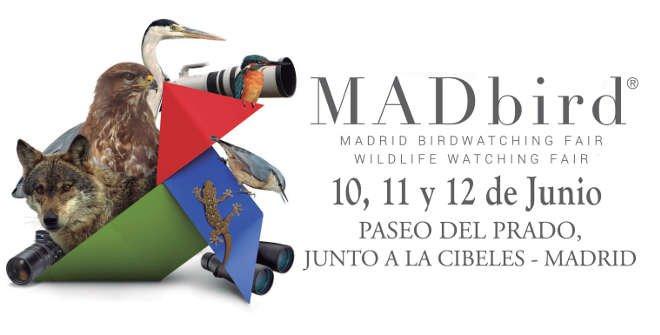 MADbird Fair 2016