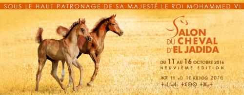 salon-del-caballo-de-el-jadida-2016