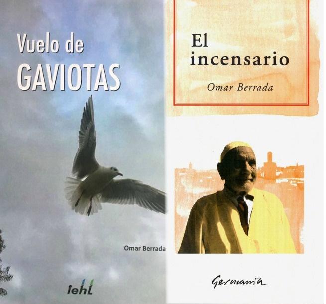 vuelo_GAVIOTAS
